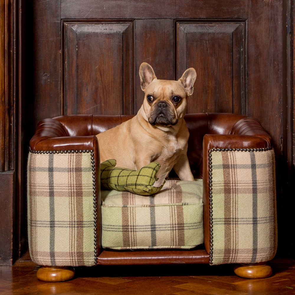 The Burghley Chesterfield luxury dog bed is hand made in tan leather and sage tweed, perfect for your pet!