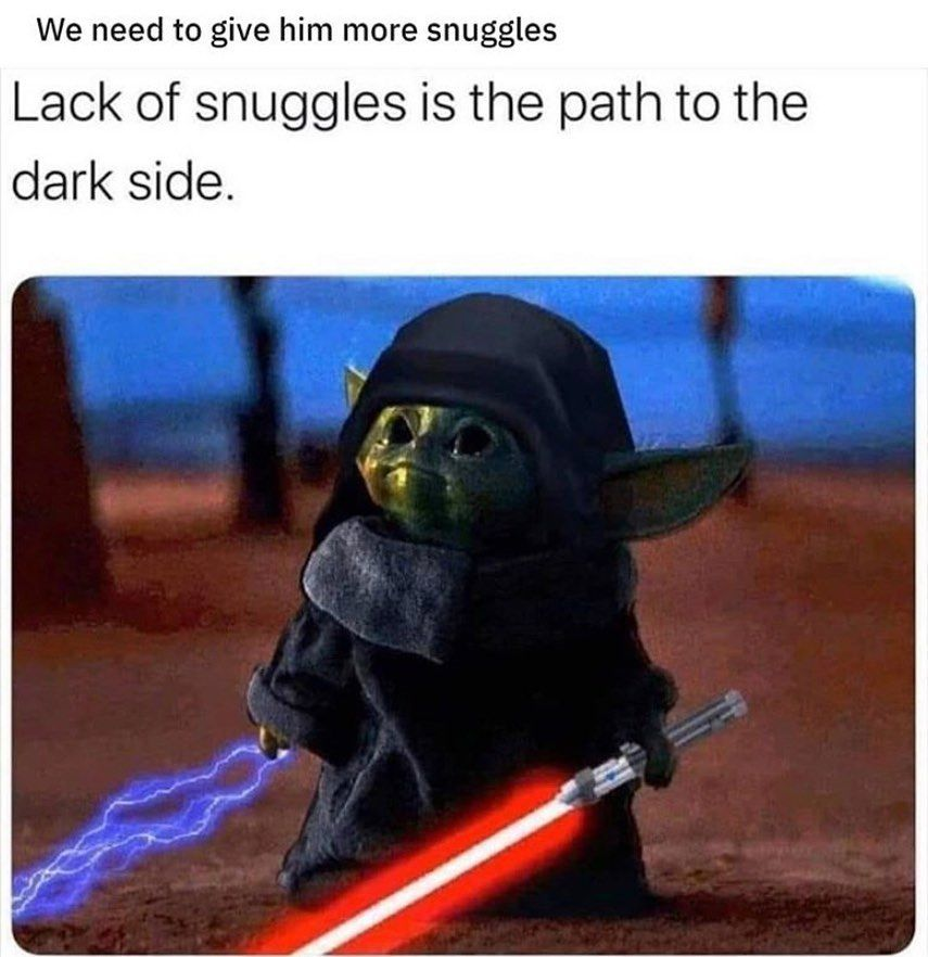Norton Kenobi On Instagram I Have Spoken May The Force Be With You Babyyodaism Babyyoda Yoda Sith Reylo T Star Wars Memes Yoda Funny Star Wars Jokes