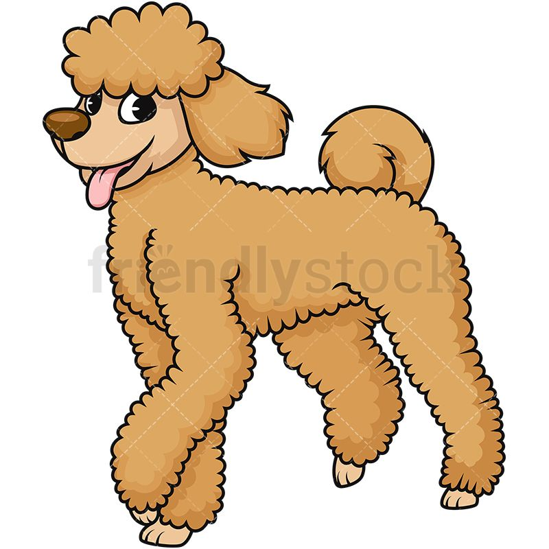 Cute Brown Poodle Dog With Tongue Out Cartoon Dog Poodle Dogs