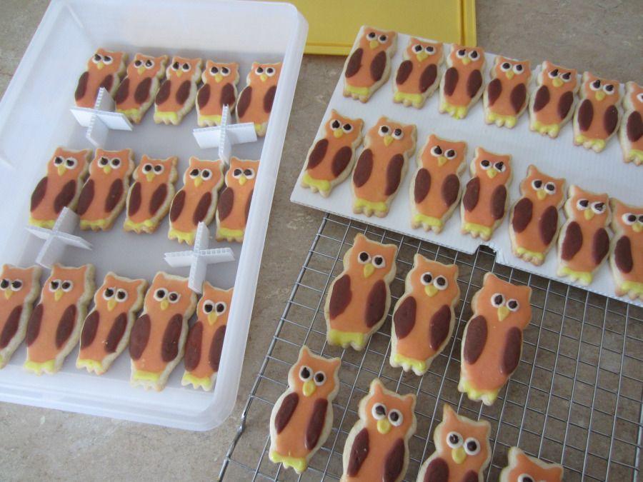 Storing Your Decorated Sugar Cookies Owl sugar cookies