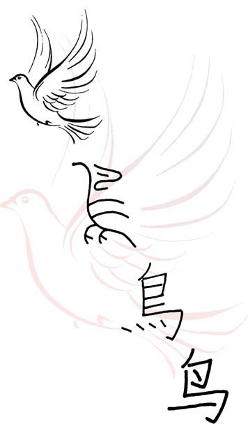 Evolution of the Chinese character for bird (niao 鸟