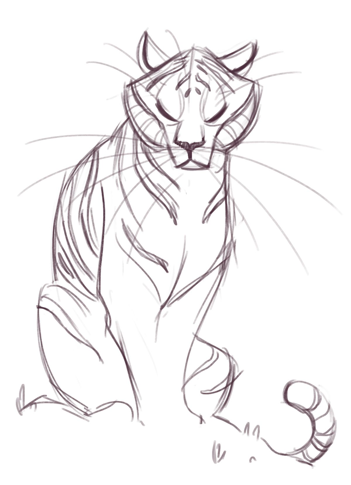181 Tiger Sketch Art