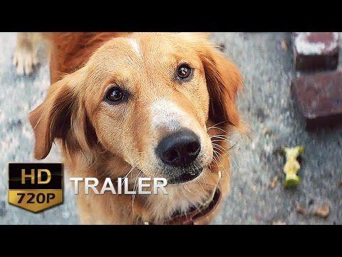 La Razón de estar contigo Trailer en español Latino - YouTube