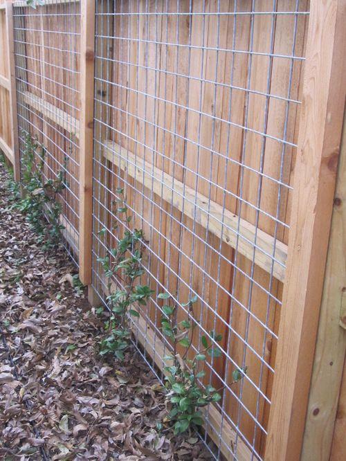 Wire Trellis Gardens Garden Design Garden Landscaping