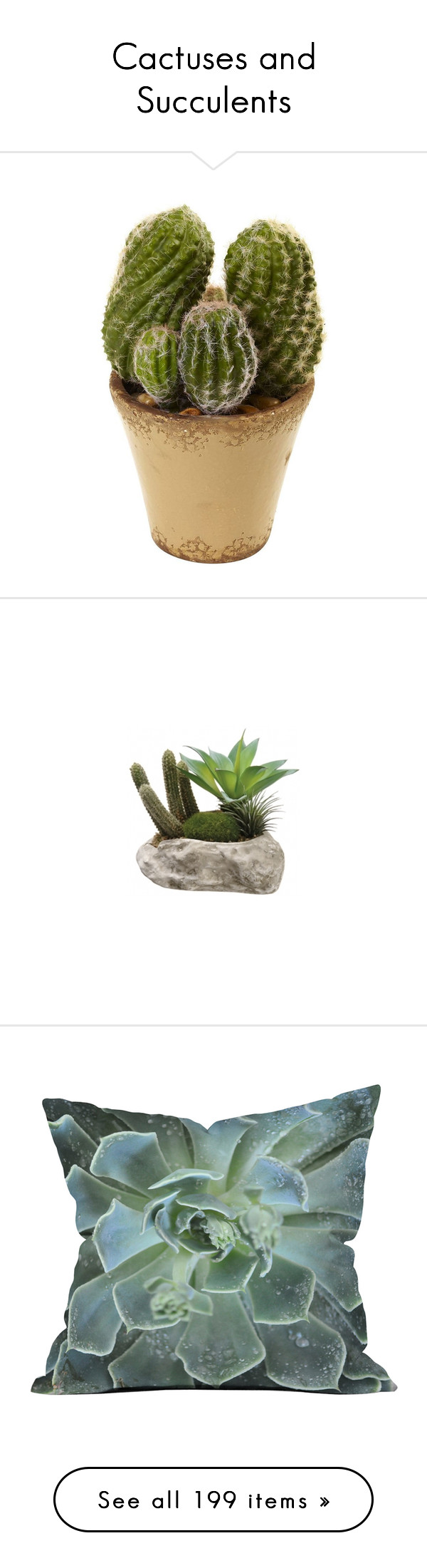 """""""Cactuses and Succulents"""" by synkopika ❤ liked on Polyvore"""