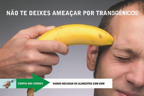Portugal e os Transgénicos ou OGM