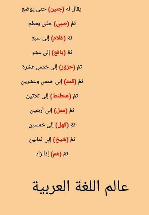 مراتب العمر في اللغة العربية Learn Arabic Language Learn English Words Arabic Language