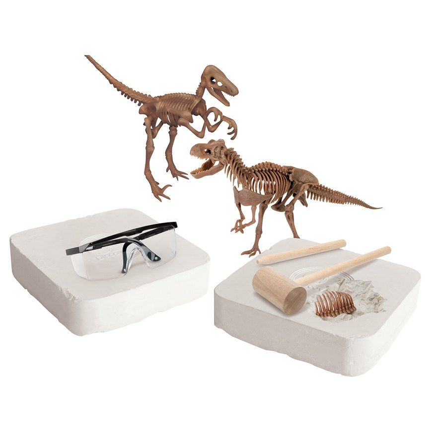 Discovery Dinosaur Fossil Dig, Lt Brown | Products
