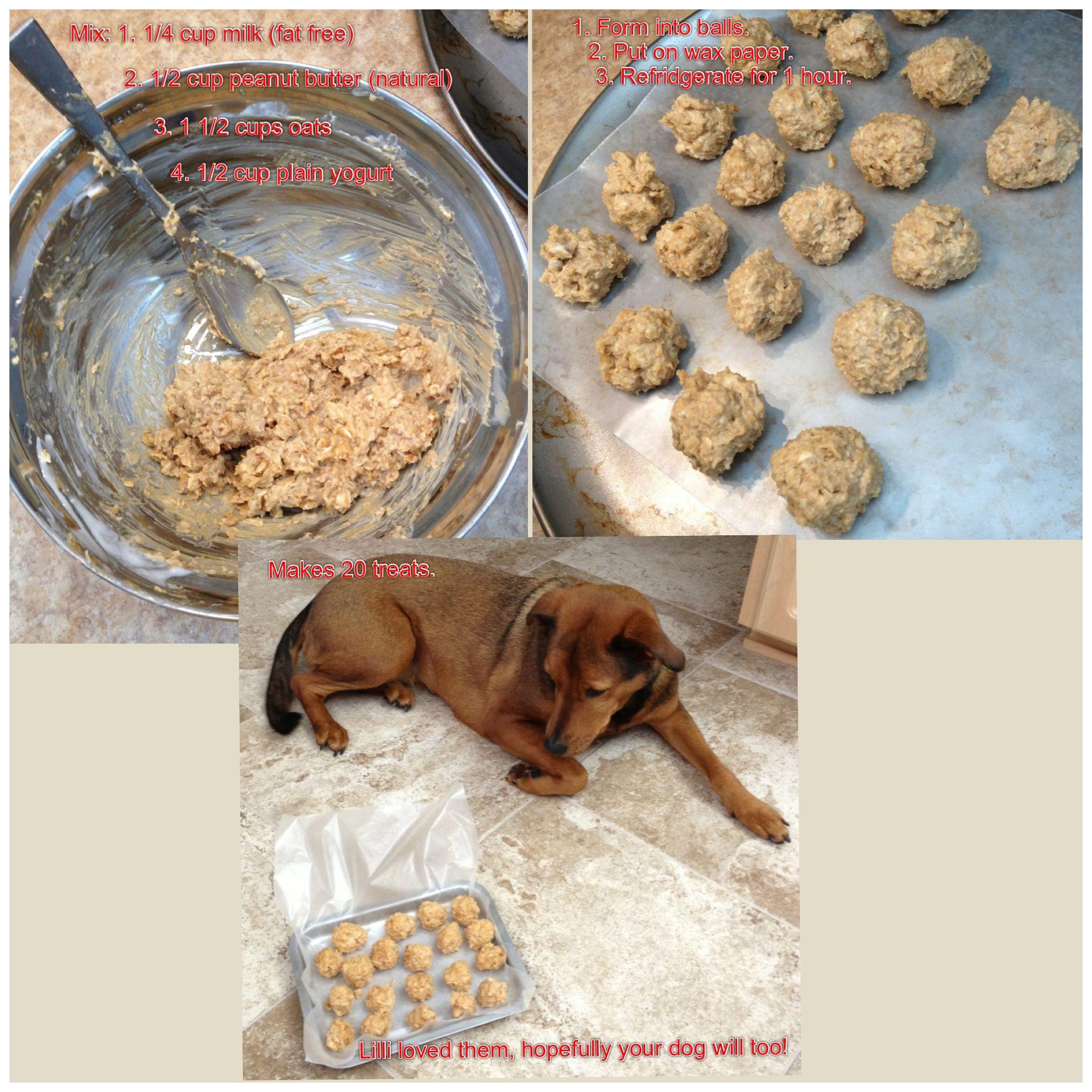 Easy Dog Treats 3l Lilli Dog Food Recipes Dog Snacks Dog Treats
