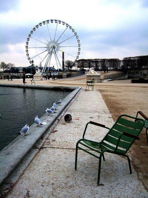 Tuileries en hiver - Paris