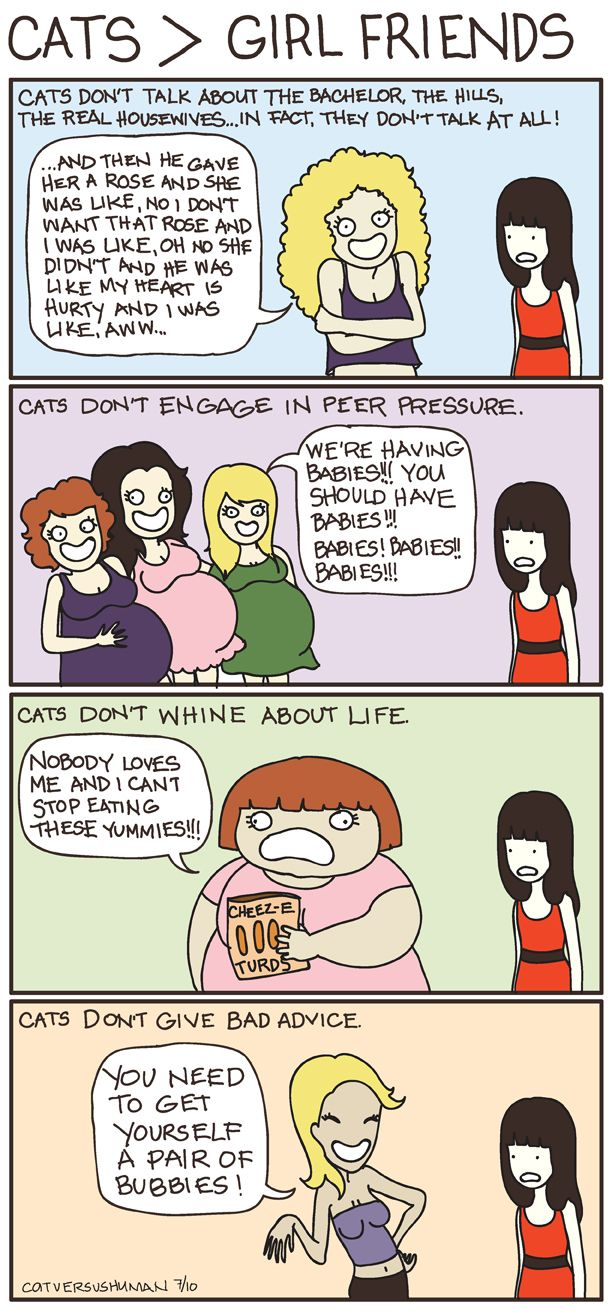 Why Cats are Better Than Girlfriends Cat vs. Human Cat