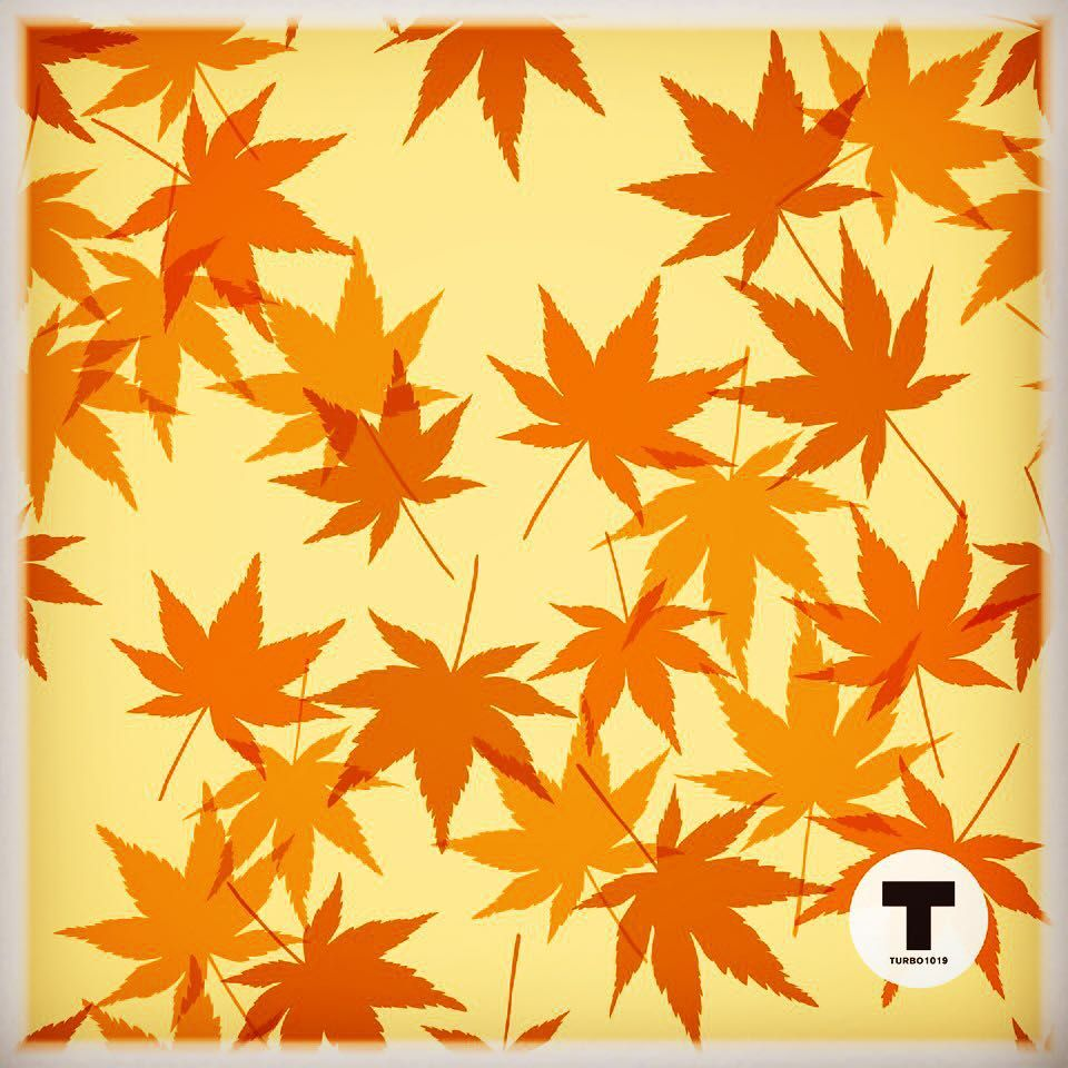 No.198 Sep 1,2015 #patterndesign #pattern #surfacepattern #textiledesign #repeatpattern #graphicdesign #vector #autumn #秋 #柄 #パターン #turbo1019 #turbo10190198 #tu10pa