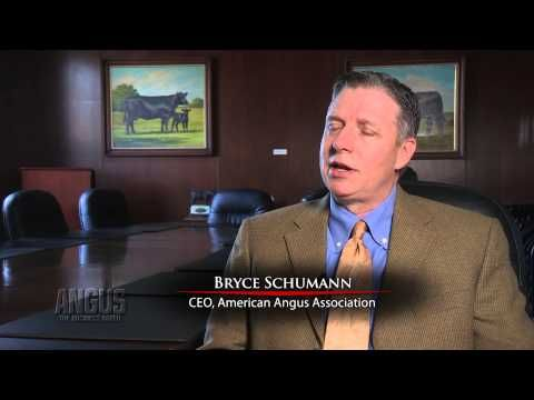 American Angus Association CEO Bryce Schumann discusses the organizations plans to move its 2014 annual meeting to Kansas City, Mo., and the opportunities a stand-alone event provides.