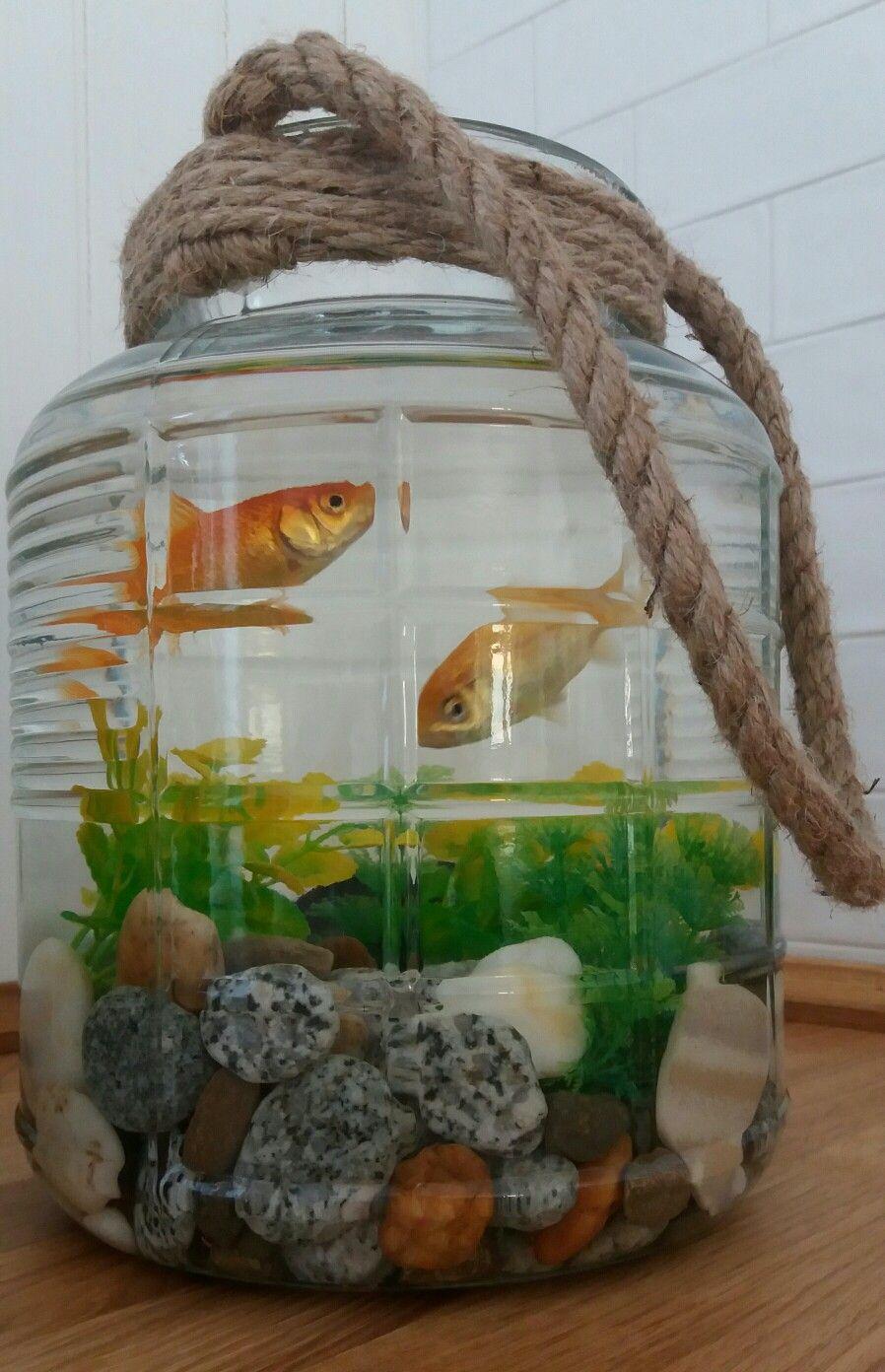 Farmhouse Style Fish Bowl Aquarium Diy Fish Tank Fish Pond