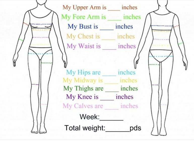 Trust image in body measurement chart printable