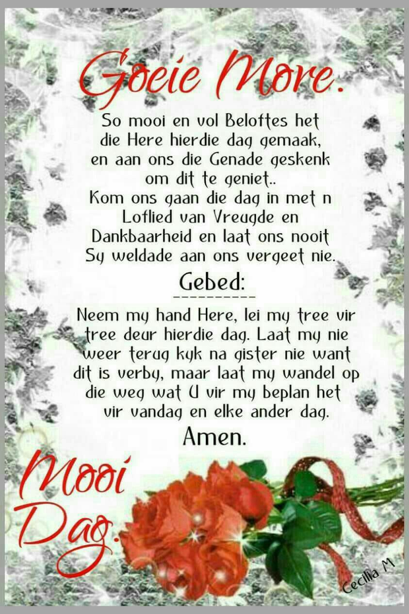 Pin by martin thompson on afrikaans pinterest afrikaans morning greeting morning messages good morning quotes good morning wishes goeie nag goeie more evening greetings afrikaans positive quotes m4hsunfo