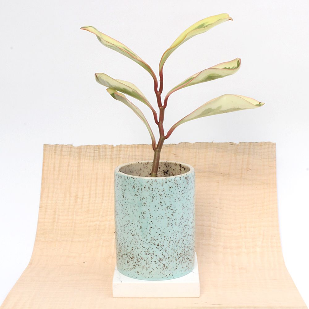 """Speckled buff stoneware multi-use vessel. Light turquoise outside, matte  finish.  Measures approximately: 4.75"""" H / 3.75"""" W"""