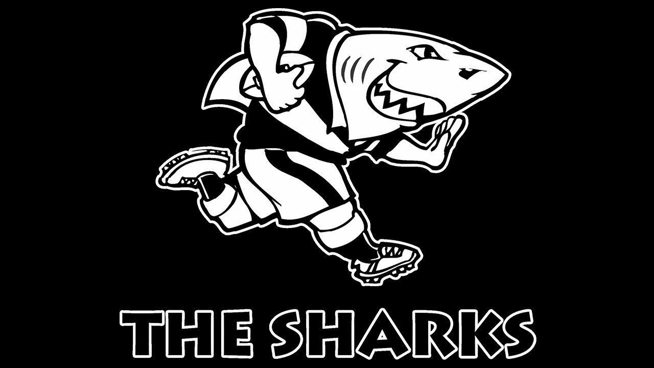 Meaning Sharks Logo And Symbol History And Evolution Shark Logo Shark Union Logo