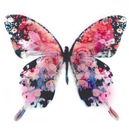 floral butterfly collage