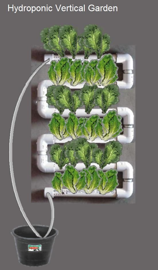 Hydroponic vertical garden aquaponics pinterest for Vertical garden wall systems