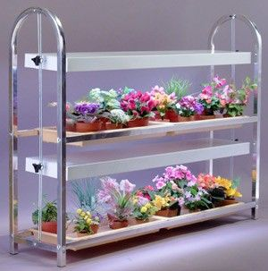 Growers Supply Dual Shelf Four Tray Lighted Tabletop 400 x 300