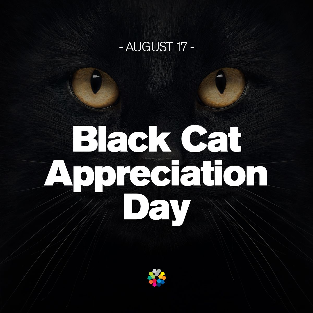 National Black Cat Appreciation Day is today. Let's hear