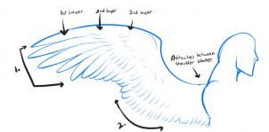 how to draw anime wings, draw an anime angel step 1