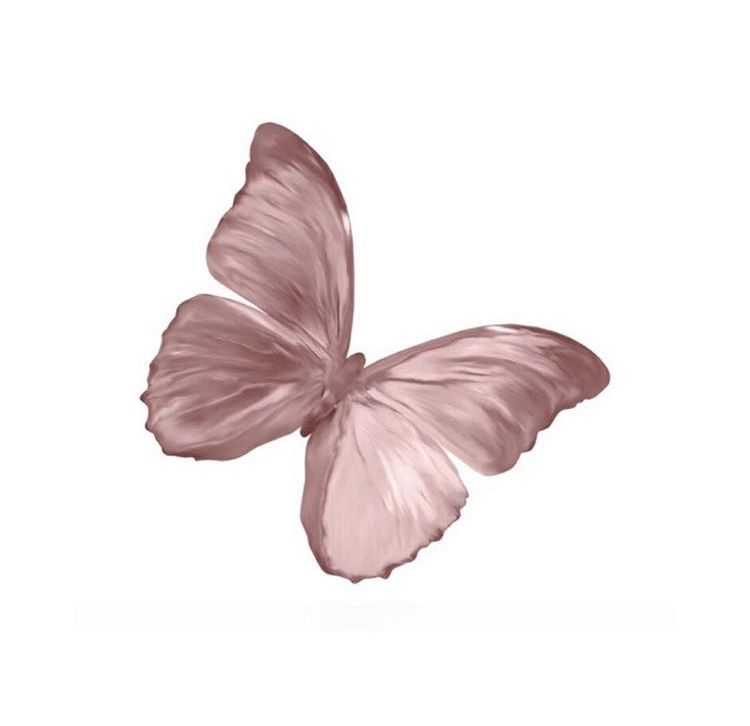 Pin By Mariam Abdelaziz On Polyvore Pngs Butterfly Printable Butterfly Wallpaper Aesthetic Stickers