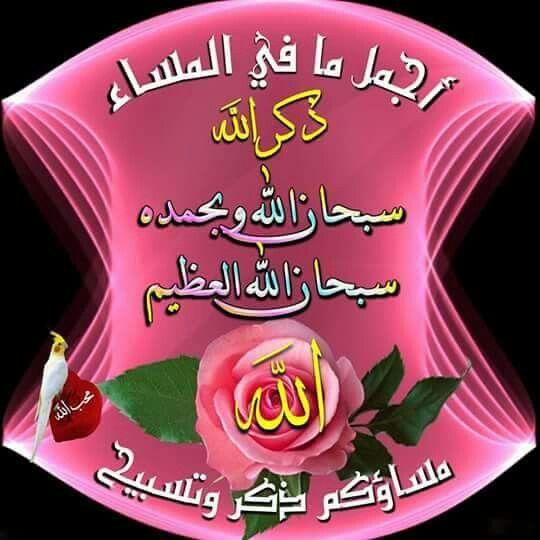اجمل ما في المساء ذكر الله جل في علاه سبحان الله وبحمده سبحان الله العظيم Greetings Islamic Art Allah