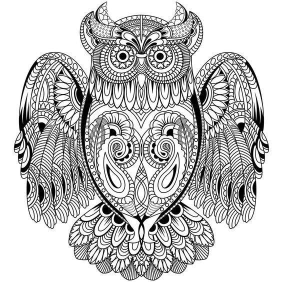 Owl Coloring Page: Coloring Pages, Adult Coloring Pages