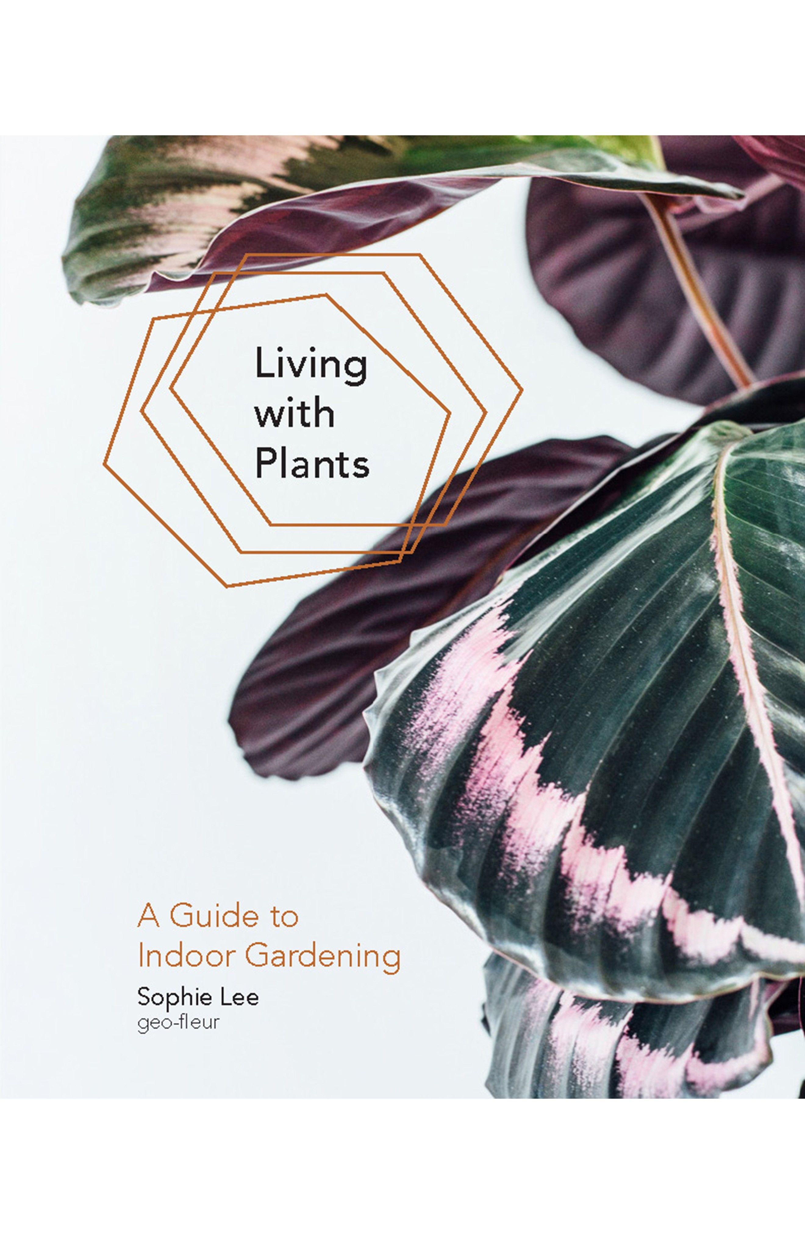 c297121f6c4602347172845b74a0dfc6 - Living With Plants A Guide To Indoor Gardening