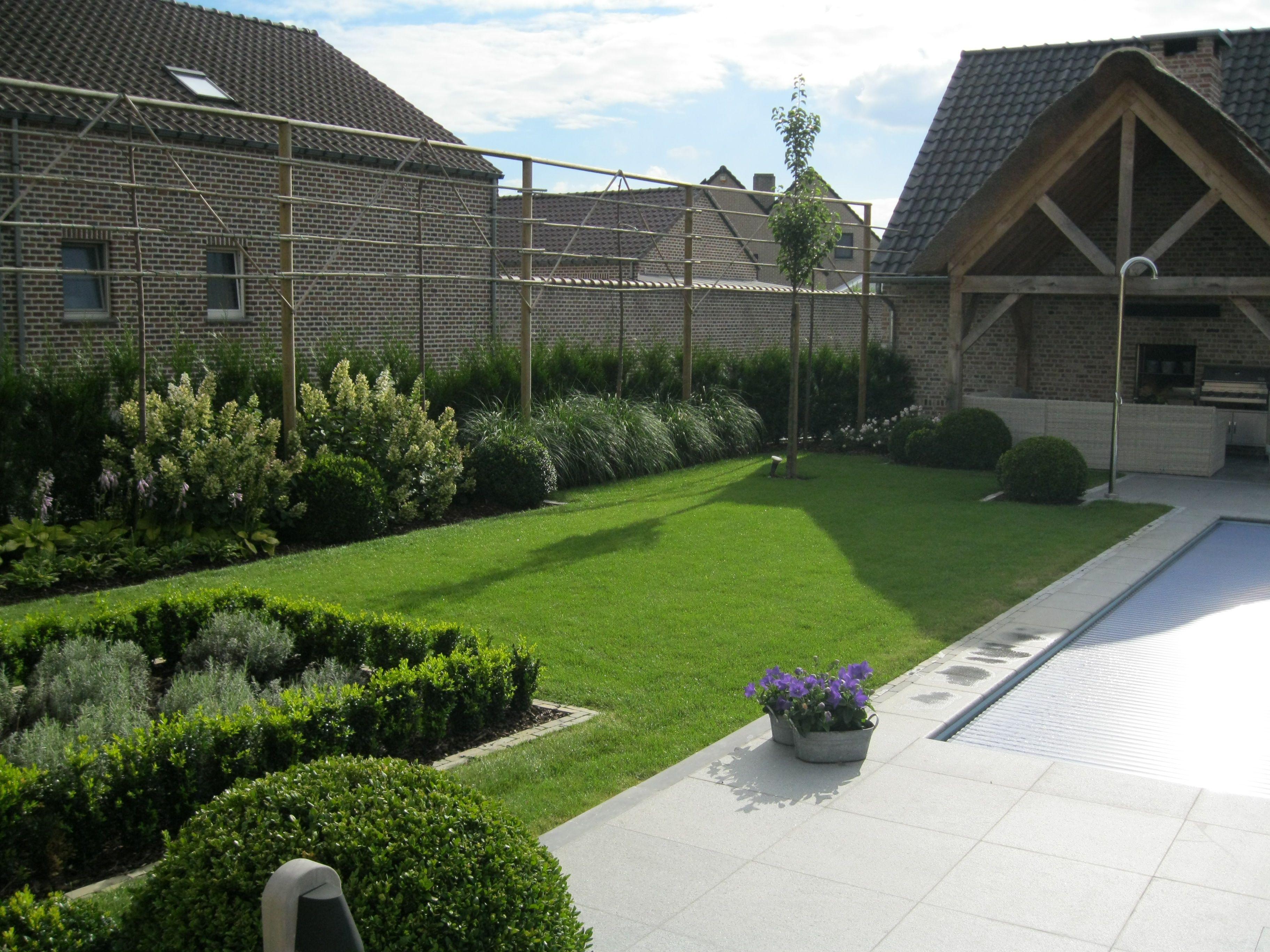 Landelijke tuin mooie border met oa pluimhortensia 39 s buxusbollen en ander groen ook de - Moderne landschapsarchitectuur ...