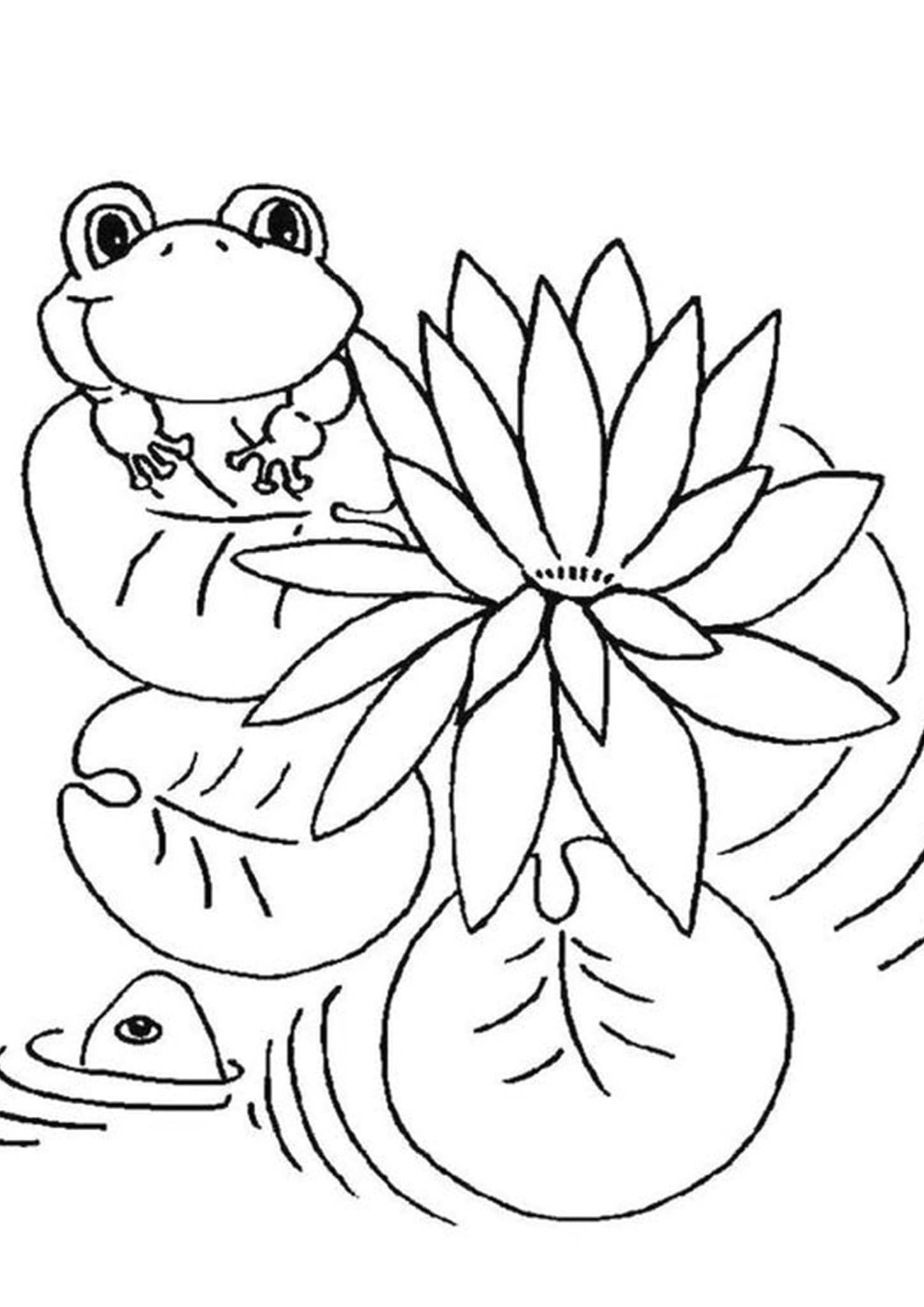 Free Easy To Print Frog Coloring Pages Frog Coloring Pages Dinosaur Coloring Pages Animal Coloring Pages [ 2048 x 1448 Pixel ]