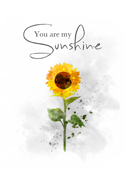 You Are My Sunshine Pillow | Flower