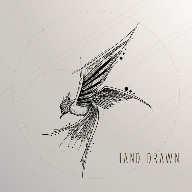 8043898e46 Pássaro desenhado mão Vetor grátis