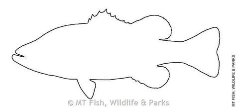 Largemouth Bass Fish Outline Fish Outline Fish Patterns Fish