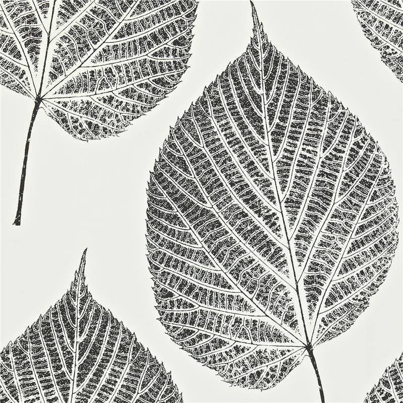 Onyx Black Chalk White 110373 Leaf Momentum 2