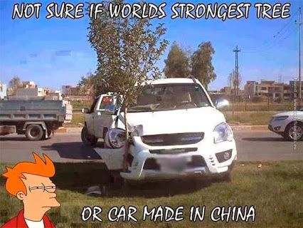Not Sure If Worlds Strongest Tree Or Car Made In China