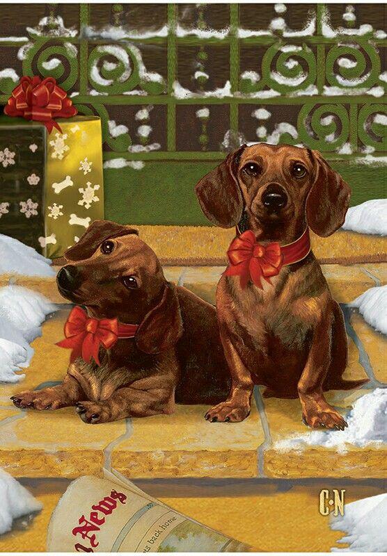 Christmas Dachshund Christmas Cards Dachshund Christmas