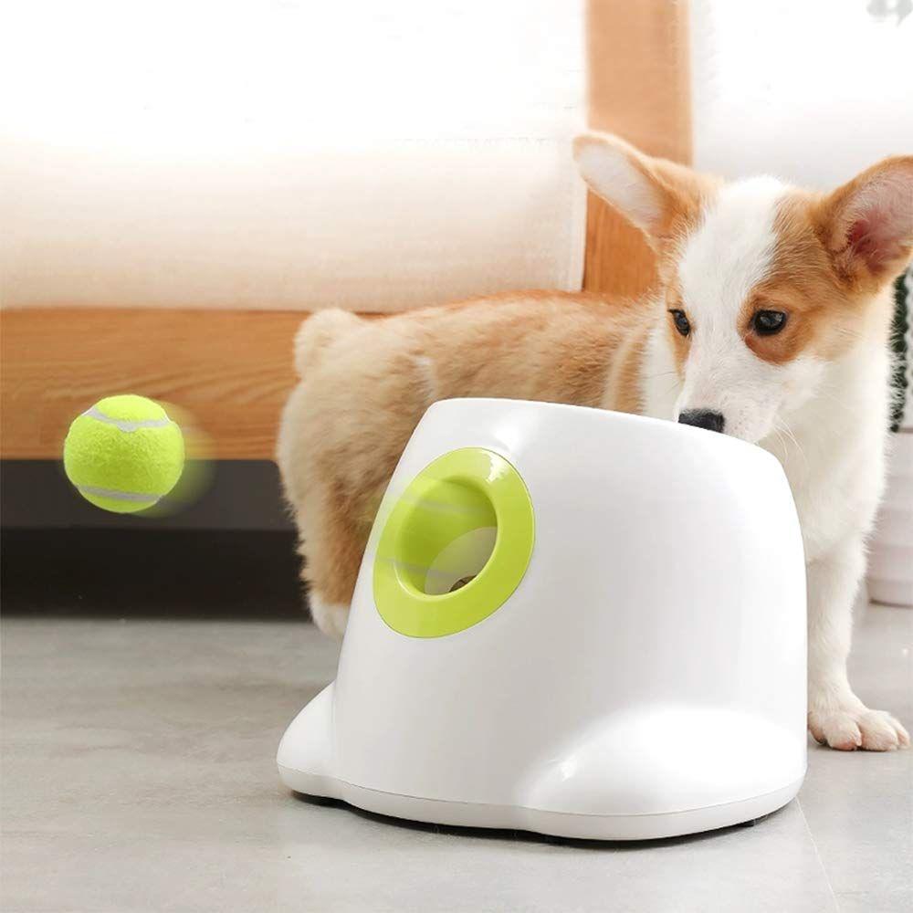 51uvdzmhofl Sl1000 Jpg Dog Ball Dog Ball Thrower Ball Launcher