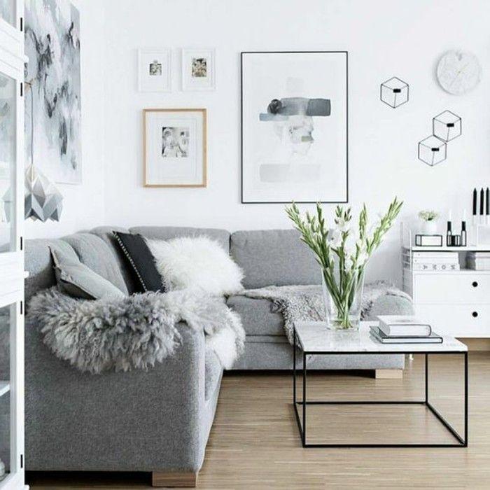 salon gris et blanc, couleur peinture salon blanc et canapé gris ...