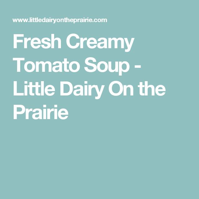 Fresh Creamy Tomato Soup - Little Dairy On the Prairie