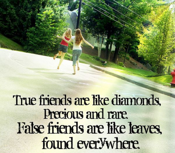 Quotes About The Importance Of Friendship Fascinating True Friends Are Like Diamonds Precious And Rarefalse Friends