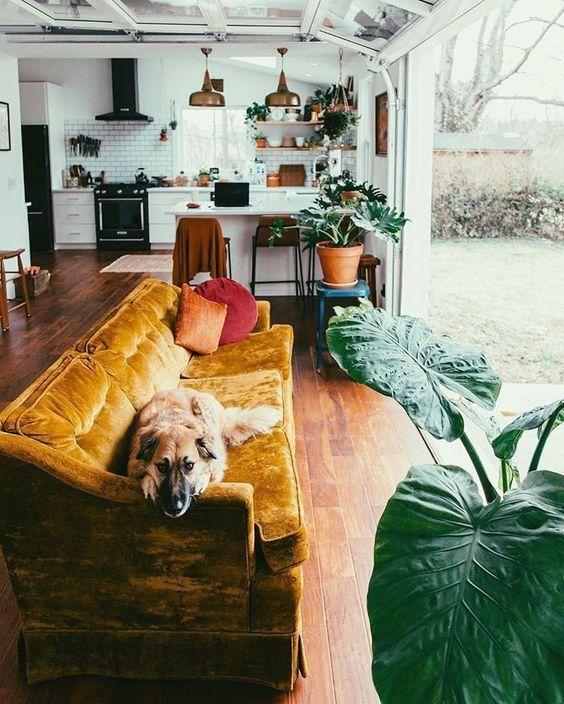 Home decor boho also best living room images in future rh pinterest