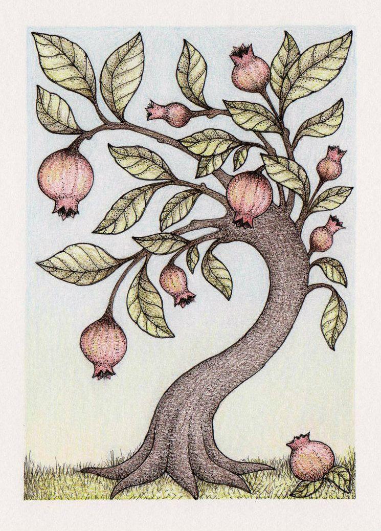Pomegranate Tree by me-tal on deviantART