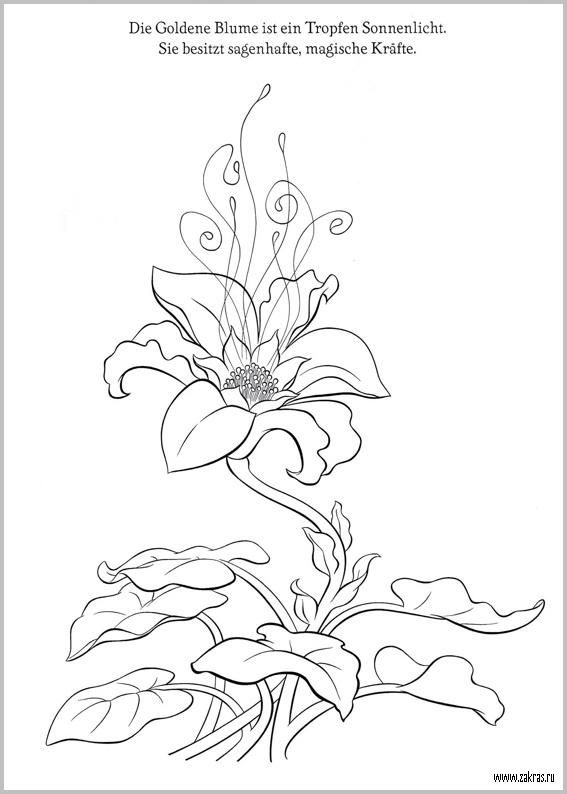 Раскраска №2 Рапунцель (Rapunzel coloring book) | coloring- Disney ...