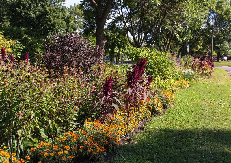 Metro Blooms - Best Volunteer Collaboration Garden 2014 - Minneapolis Park and Recreation Board