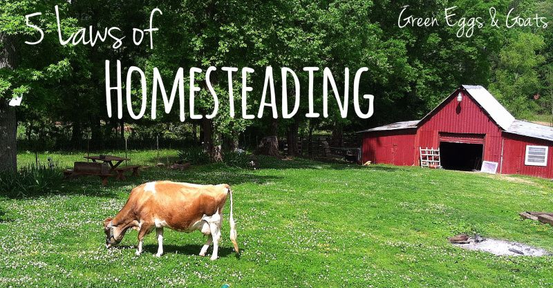 5 Laws of Homesteading | What would, The o'jays and To the