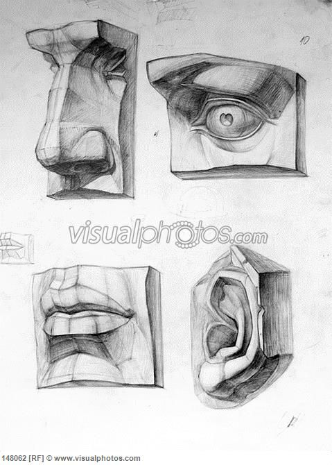 Plaster cast human body fragments drawing: nose, eye, mouth, ear ...
