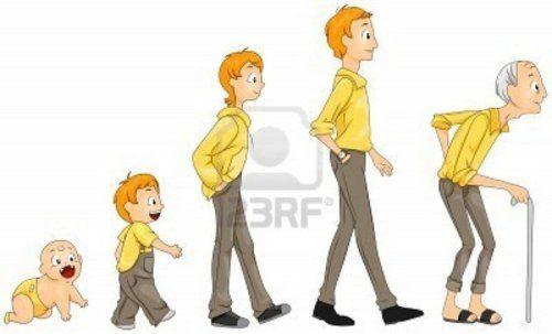 las etapas de la vida del ser humano para niños - Buscar con ...